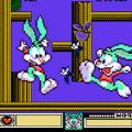 疯狂兔子冒险