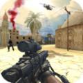 军队射手枪支专家v1.0